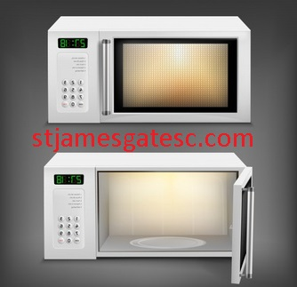 BEST MICROWAVE OVEN WITH CONVECTION